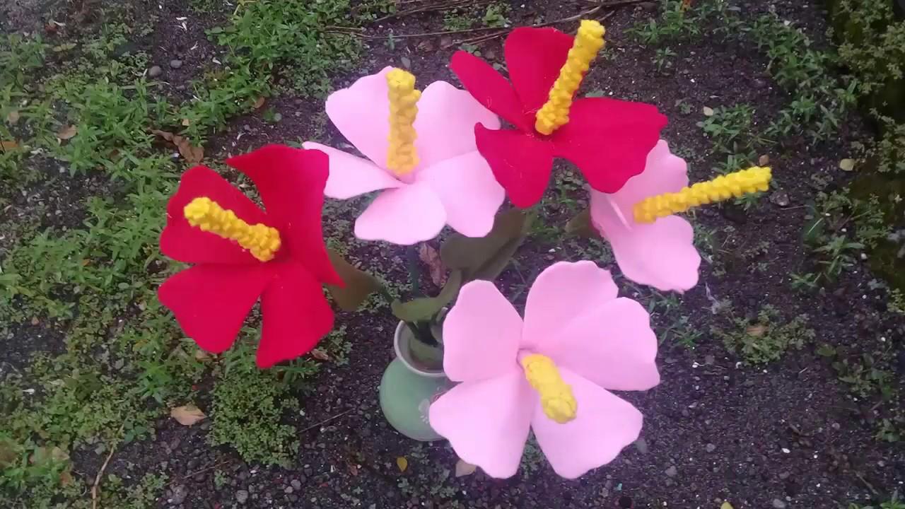 Unduh Gambar Setangkai Bunga Kembang Sepatu