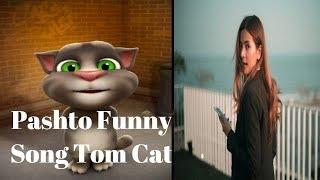 Yara Ta Ba Rawalama Tom Cat New Funny Song