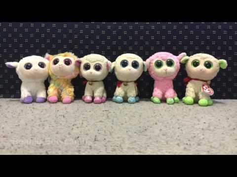 My Beanie Boo Collection |  Codys Beanie Boos