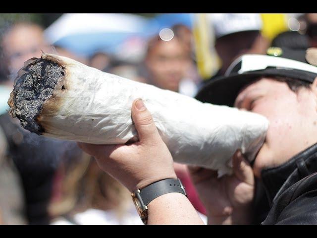 2 POUND JOINT - 4:20, 4/20 420, 2013 -  Golden Gate Park, Hippie Hill, Guinness Book World Record!