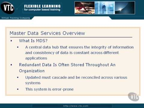 03 Master Data Services Overview