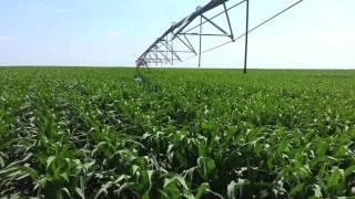 Video Life of a Farmer: July download MP3, 3GP, MP4, WEBM, AVI, FLV Juni 2018