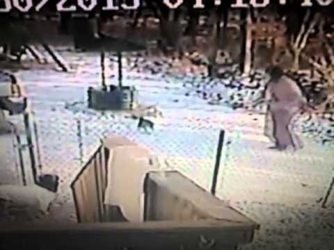 Viewer Video: Cat attacks woman in the snow thumbnail