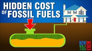 Another Hidden Cost of Fossil Fuels | In Depth