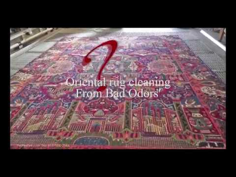 Oriental rug cleaning from bad Odors'