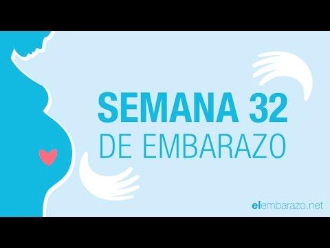 Semana 32 de embarazo 32 semanas de embarazo el embarazo semana a semana youtube - 15 semanas de embarazo cuantos meses son ...