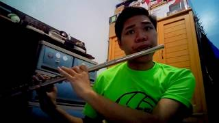 Too Good At Goodbyes by Sam Smith | Flute Cover