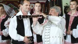 Bebe Dragomir - Pica floarea de cais