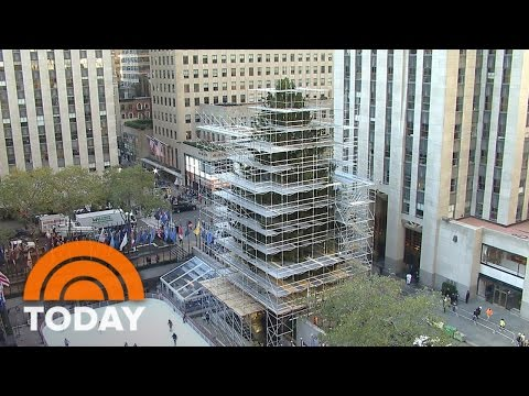 The 94-Foot Rockefeller Center Christmas Tree Arrives By Truck | TODAY