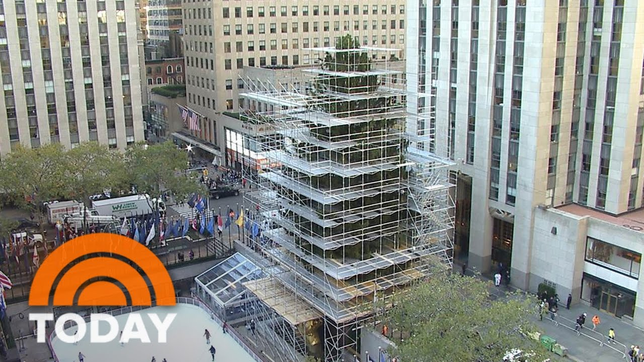 Camera Rockefeller Center : The 94 foot rockefeller center christmas tree arrives by truck