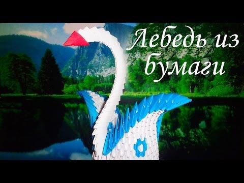 Модульное оригами! Лебедь из бумаги!