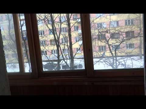 Республика Коми город Ухта видеообзор двухкомнатной квартиры
