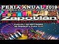 Video de Zapotlán de Juárez