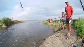 Рыбалка на окуня и тарань с ультралайтом на поплавок! Что делать когда окунь не клюет?