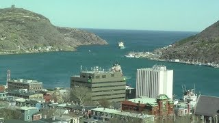 Webcam of Downtown St. John's