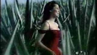 Shania Twain- Hits Medley 13 years