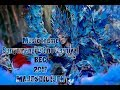 Music Theme Banyuwangi Ethno Carnival  Bec  2017 Majestic Ijen   New Version