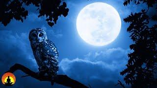 ???? Deep Sleep Music 24/7, Relaxing Music, Insomnia, Sleep, Calm Music, Relax, Sleeping, Spa, Study