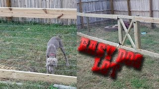 How to Make a Wooden Dog Lot
