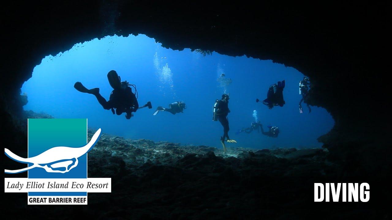 Scuba Diving Lady Elliot Island Southern Great Barrier Reef Queensland Australia Youtube