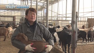 [역전의 부자농부]  무항생제 염소로 억대 농부 된 홍…