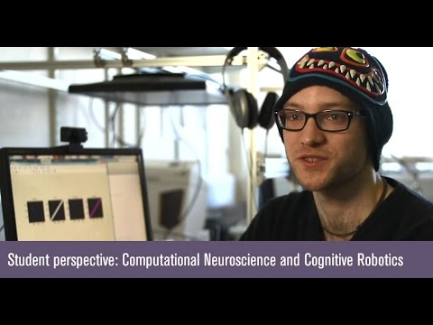 MSc Computational Neuroscience and Cognitive Robotics