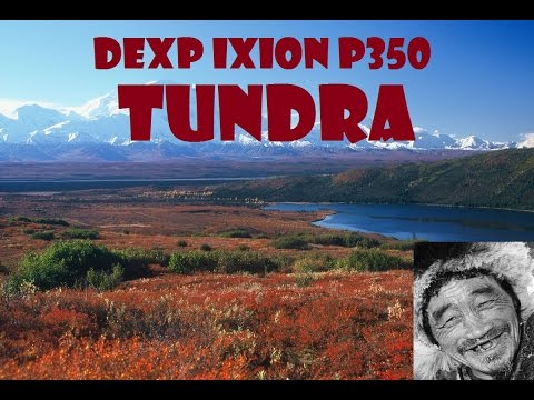 Обзор смартфона DEXP Ixion P350 Tundra + Краш Тесты