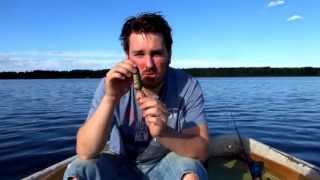 Bästa tips för fiske!
