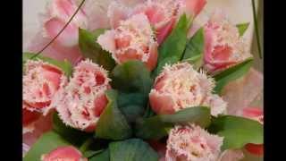 Тюльпаны и другие весенние цветы от салона