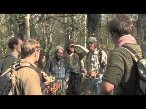 Why Attend the Alderleaf Wilderness Certification Program?