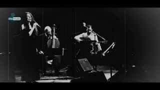 Zog nit keynmol - Timna Brauer & Elias Meiri Ensemble live in ORF