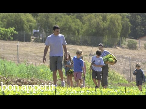 A Day on the Farm With Suzanne Goin - Little Chefs Big Meals