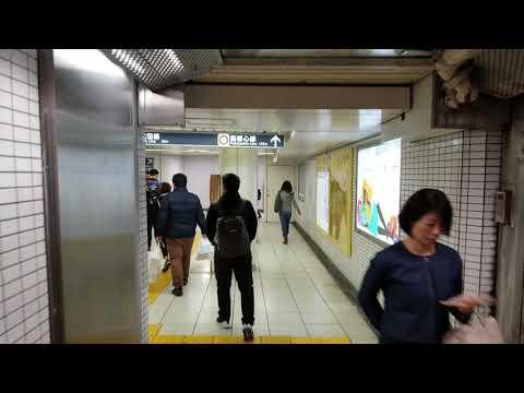 tokyo-metro-train-station---japan-trip---20/november/2018