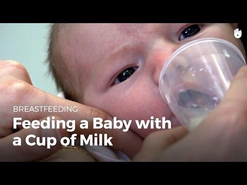 Feeding a baby with a cup of milk | Breastfeeding