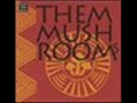 Mushroom Soup by Them Mushrooms (Songs from Kenya)- taussy24