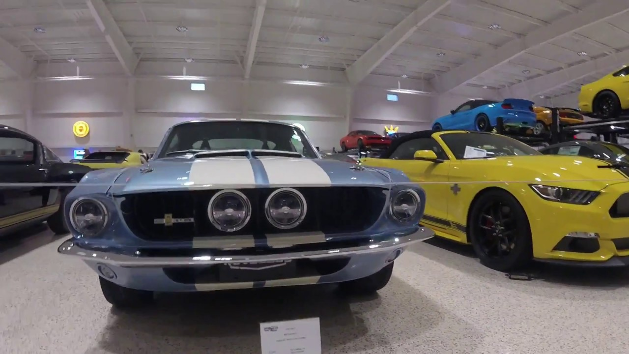 Mustangs Shelby S And Ford Gt S At The American Muscle Car Museum