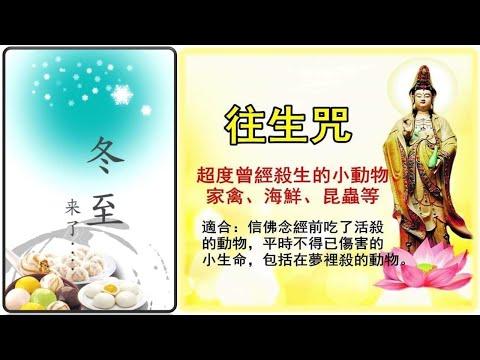 20181209 关于冬至及冬至到年初三念诵往生咒的问题 ~  心灵法门