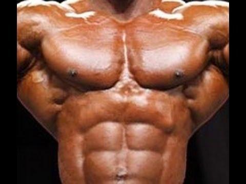 paravertebral-muscles