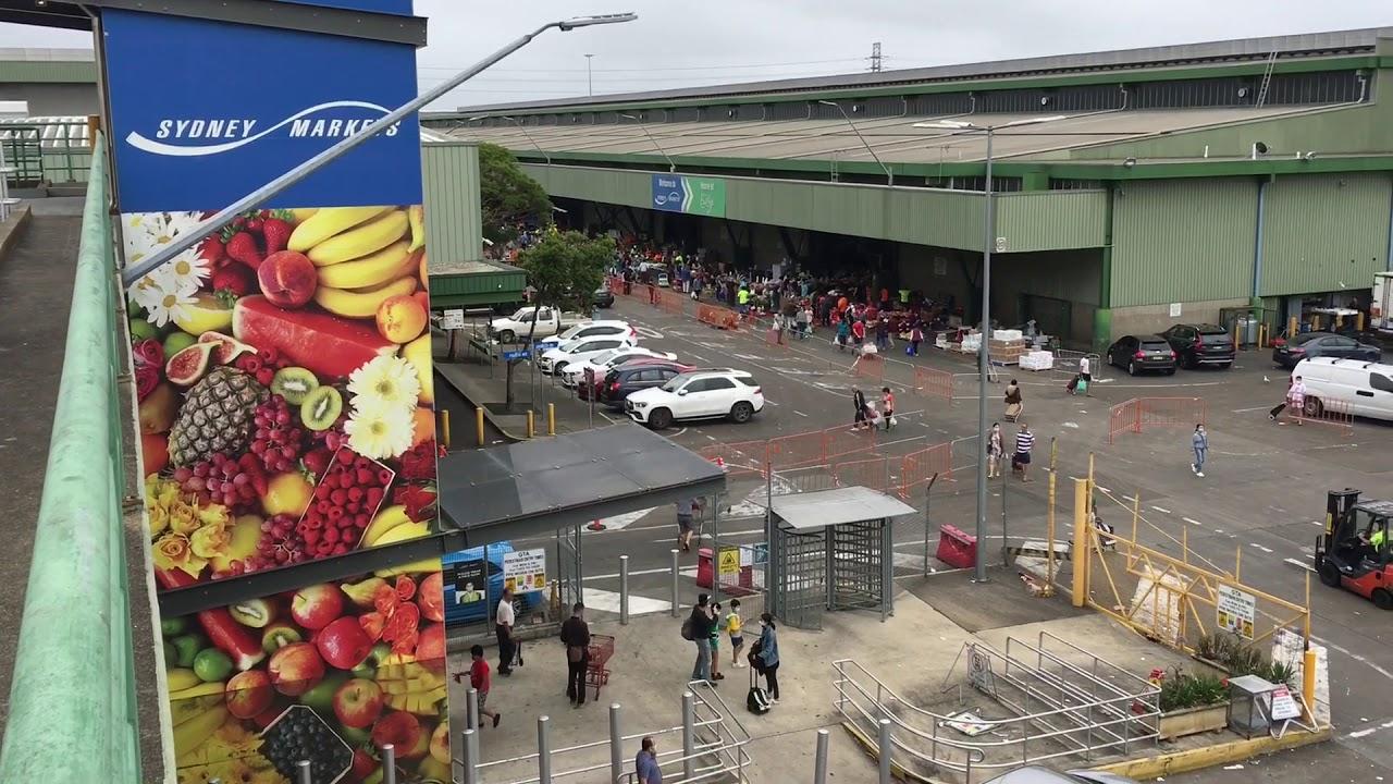 去悉尼菜市场购物