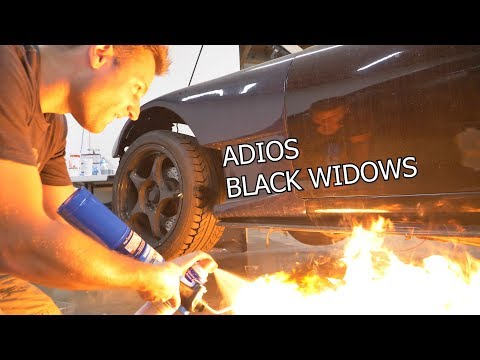 3 ways to remove Black Widow Spiders from your CAR