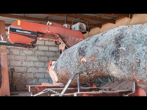 LT20 Sawmills cut rosewood timber in Zambia  Africa WoodMizer