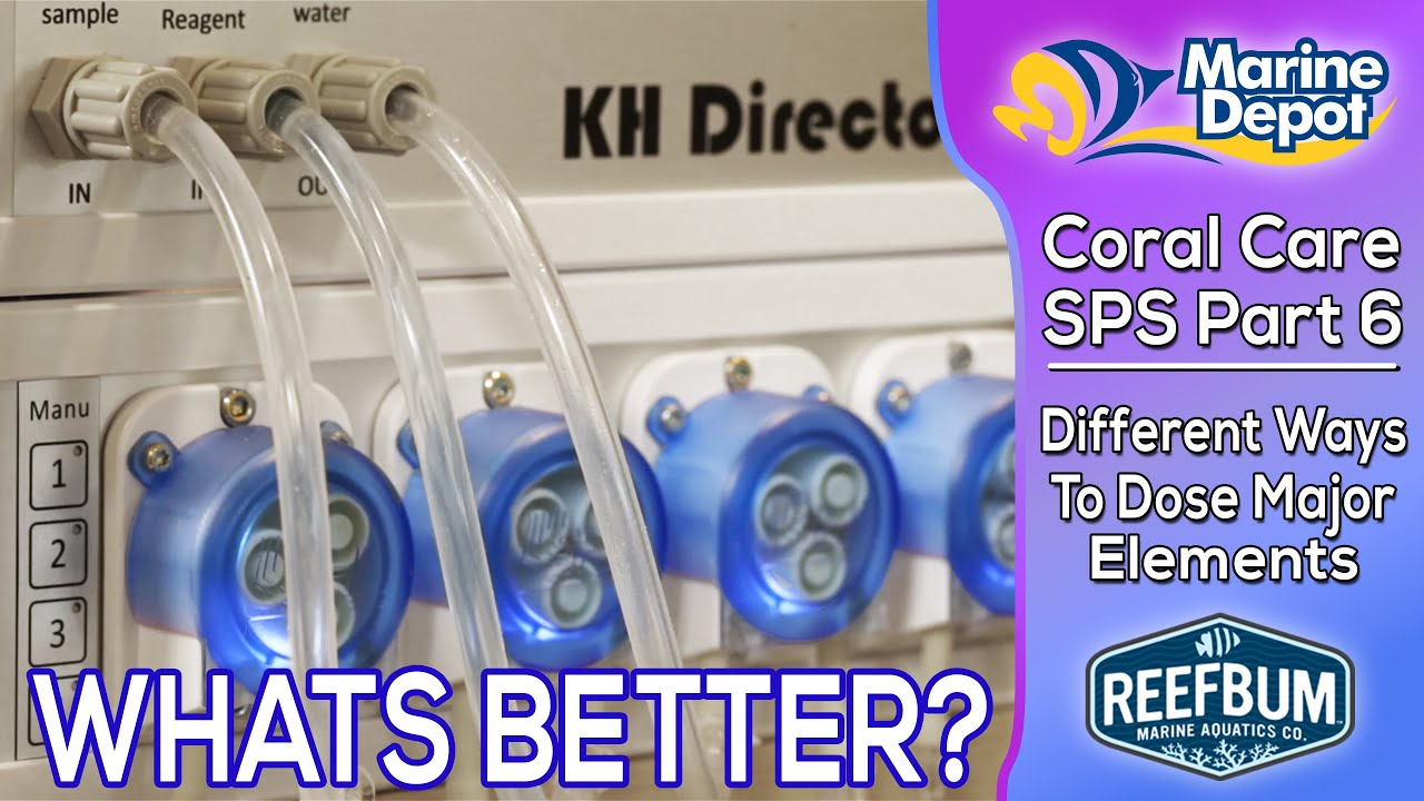 What Works better?  Dosing 2 Part or Calcium Reactors?: SPS Coral Care Part 6 Thumbnail