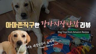 [Eng Sub] 아마존에서 직구한 강아지 장난감 리뷰…