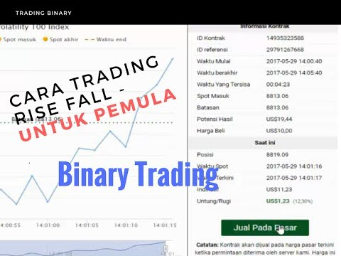 TRIK TRADING BINARY RISE FALL INDEK 100 BACA POINT