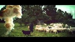 HD Trailer - Kommandør Treholt & Ninjatroppen