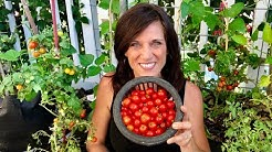 ? LIVE: 4 of my Favorite Summer Garden Tips, Q & A (REPLAY)