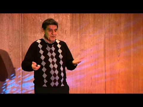 Global impact of a sustainable energy pathway | Hamid Arastoopur | TEDxIIT