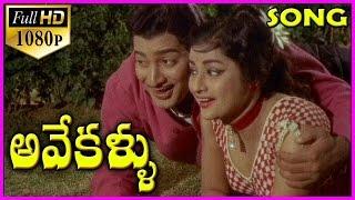 Avey Kallu - Telugu 1080p Video Songs / Krishna Old Hit Songs / Telugu Hd / Hit Songs