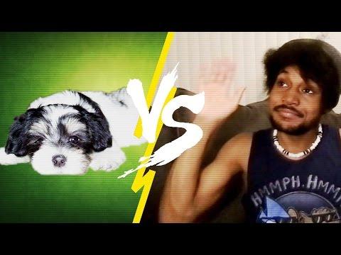 MAN VS DOG | #CKADay [11]