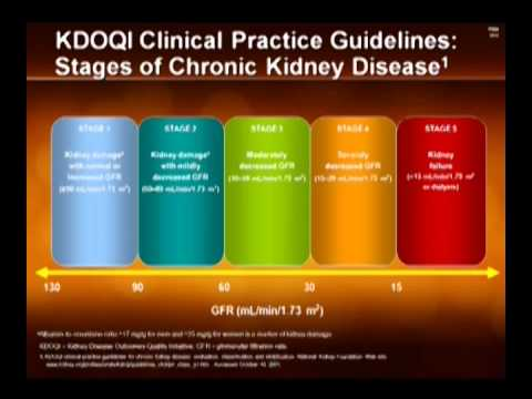 UDOP 2012 9th Scientific Session NEW TRENDS IN THE TREATMENT OF TYPE 2 DIABETES